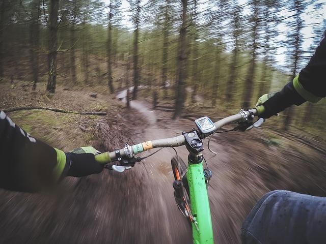 horské kolo v lese